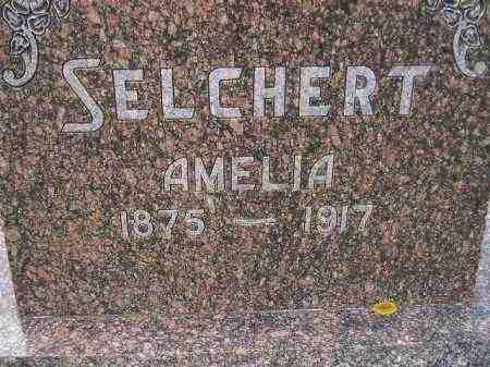 SELCHERT, AMELIA - Codington County, South Dakota | AMELIA SELCHERT - South Dakota Gravestone Photos