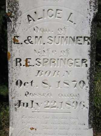 SUMMER SPRINGER, ALICE LUELLA - Codington County, South Dakota   ALICE LUELLA SUMMER SPRINGER - South Dakota Gravestone Photos