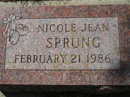 SPRUNG, NICOLE JEAN - Codington County, South Dakota | NICOLE JEAN SPRUNG - South Dakota Gravestone Photos