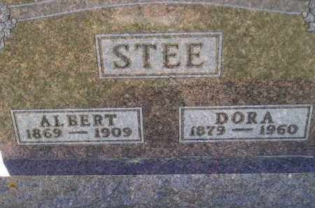 STEE, ALBERT - Codington County, South Dakota | ALBERT STEE - South Dakota Gravestone Photos