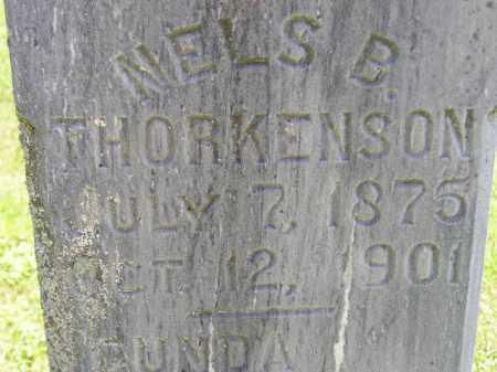 THORKELSON (THORKENSON), NELS B. - Codington County, South Dakota | NELS B. THORKELSON (THORKENSON) - South Dakota Gravestone Photos