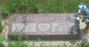 ANDERSON, HARRY - Custer County, South Dakota | HARRY ANDERSON - South Dakota Gravestone Photos