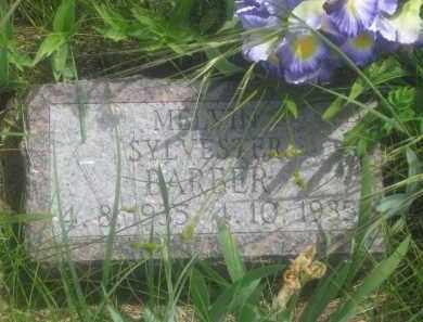 BARBER, MELVIN SYLVESTER - Custer County, South Dakota | MELVIN SYLVESTER BARBER - South Dakota Gravestone Photos