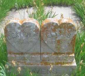 HAVENS, DEXTER E. - Custer County, South Dakota | DEXTER E. HAVENS - South Dakota Gravestone Photos