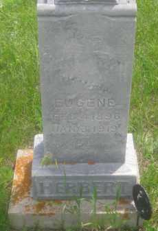 HERBERT, EUGENE - Custer County, South Dakota | EUGENE HERBERT - South Dakota Gravestone Photos