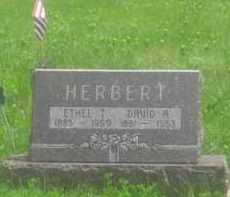 HERBERT, DAVID R. - Custer County, South Dakota | DAVID R. HERBERT - South Dakota Gravestone Photos