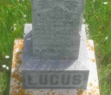 LUCUS, HARRY  S. - Custer County, South Dakota | HARRY  S. LUCUS - South Dakota Gravestone Photos
