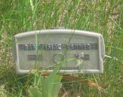 TANNER, ISIAC   (BABY) - Custer County, South Dakota | ISIAC   (BABY) TANNER - South Dakota Gravestone Photos
