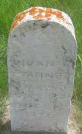 TANNER, VIVIAN - Custer County, South Dakota | VIVIAN TANNER - South Dakota Gravestone Photos