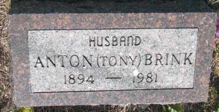 BRINK, ANTON (TONY) - Davison County, South Dakota | ANTON (TONY) BRINK - South Dakota Gravestone Photos