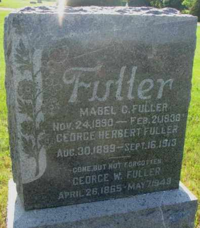 FULLER, GEORGE W. - Davison County, South Dakota | GEORGE W. FULLER - South Dakota Gravestone Photos
