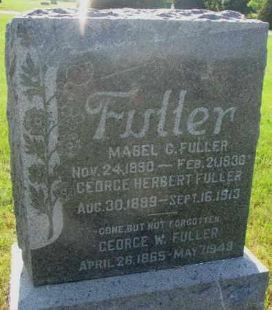 FULLER, GEORGE HERBERT - Davison County, South Dakota | GEORGE HERBERT FULLER - South Dakota Gravestone Photos