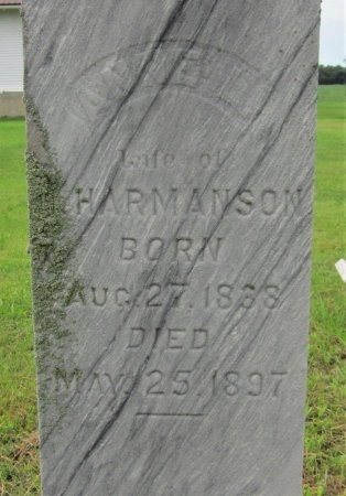 HARMANSON, ANNE L. (CLOSE UP) - Day County, South Dakota | ANNE L. (CLOSE UP) HARMANSON - South Dakota Gravestone Photos