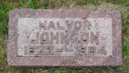 JOHNSON, HALVOR - Day County, South Dakota | HALVOR JOHNSON - South Dakota Gravestone Photos