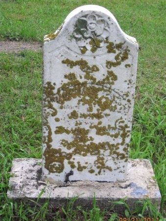 JOHNSON, JOHAN ALFRED - Day County, South Dakota | JOHAN ALFRED JOHNSON - South Dakota Gravestone Photos