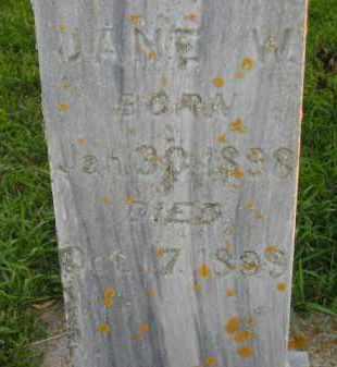 HOFTIEZER, JANE W. - Deuel County, South Dakota | JANE W. HOFTIEZER - South Dakota Gravestone Photos