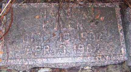 HOLEN, HANS A. - Deuel County, South Dakota | HANS A. HOLEN - South Dakota Gravestone Photos