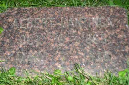 LANTINGA, ALBERT - Deuel County, South Dakota | ALBERT LANTINGA - South Dakota Gravestone Photos