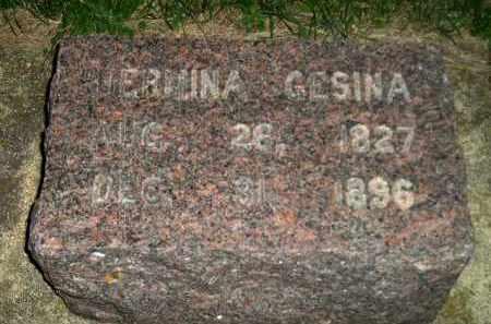 LANTINGA, HERMINA GESINA - Deuel County, South Dakota   HERMINA GESINA LANTINGA - South Dakota Gravestone Photos