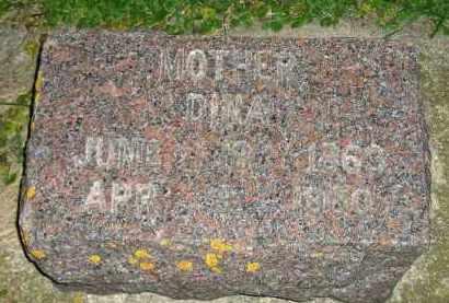 TE KRONY, DINA - Deuel County, South Dakota | DINA TE KRONY - South Dakota Gravestone Photos