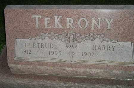 TE KRONY, HARRY - Deuel County, South Dakota | HARRY TE KRONY - South Dakota Gravestone Photos
