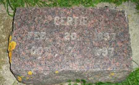 TE KRONY, GERTIE - Deuel County, South Dakota | GERTIE TE KRONY - South Dakota Gravestone Photos