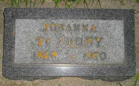TE KRONY, JOHANNA - Deuel County, South Dakota   JOHANNA TE KRONY - South Dakota Gravestone Photos