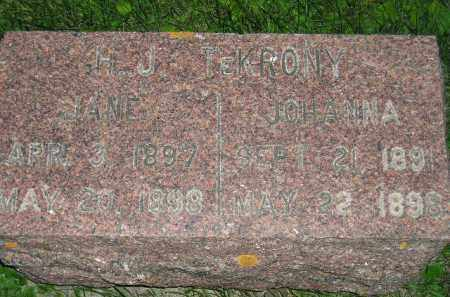 TE KRONY, JOHANNA - Deuel County, South Dakota | JOHANNA TE KRONY - South Dakota Gravestone Photos