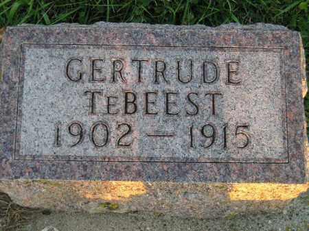 TEBEEST, GERTRUDE - Deuel County, South Dakota | GERTRUDE TEBEEST - South Dakota Gravestone Photos