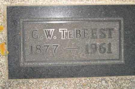 TEBEEST, G.W. - Deuel County, South Dakota   G.W. TEBEEST - South Dakota Gravestone Photos