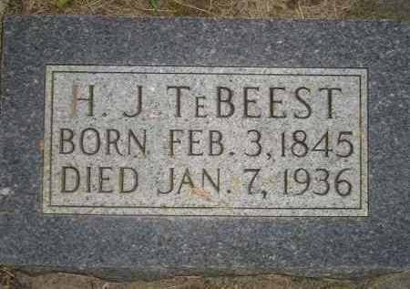 TEBEEST, H.J. - Deuel County, South Dakota   H.J. TEBEEST - South Dakota Gravestone Photos