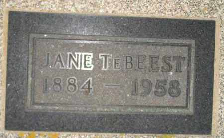 TEBEEST, JANE - Deuel County, South Dakota | JANE TEBEEST - South Dakota Gravestone Photos