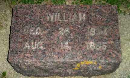 TE KRONY, WILLIAM - Deuel County, South Dakota   WILLIAM TE KRONY - South Dakota Gravestone Photos