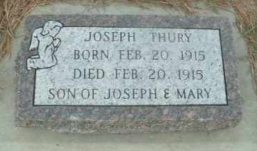 THURY, JOSEPH - Douglas County, South Dakota | JOSEPH THURY - South Dakota Gravestone Photos