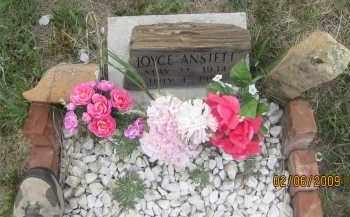 ANSTETT, JOYCE - Fall River County, South Dakota | JOYCE ANSTETT - South Dakota Gravestone Photos