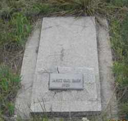 BAHN, JANET GAIL - Fall River County, South Dakota | JANET GAIL BAHN - South Dakota Gravestone Photos