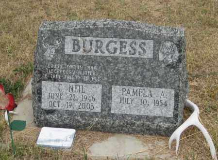 BURGESS, PAMELA  A. - Fall River County, South Dakota | PAMELA  A. BURGESS - South Dakota Gravestone Photos