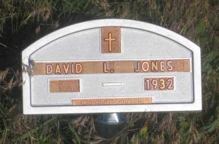 JONES, DAVID  L. - Fall River County, South Dakota | DAVID  L. JONES - South Dakota Gravestone Photos