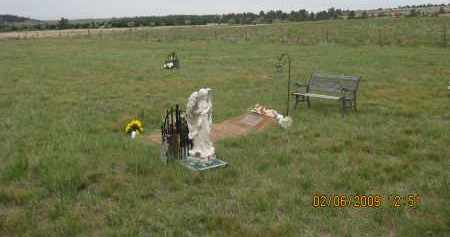 MCCLURE, TED  V.  (PIC #2) - Fall River County, South Dakota | TED  V.  (PIC #2) MCCLURE - South Dakota Gravestone Photos