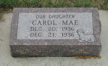 PETERS, CAROL MAE - Fall River County, South Dakota | CAROL MAE PETERS - South Dakota Gravestone Photos