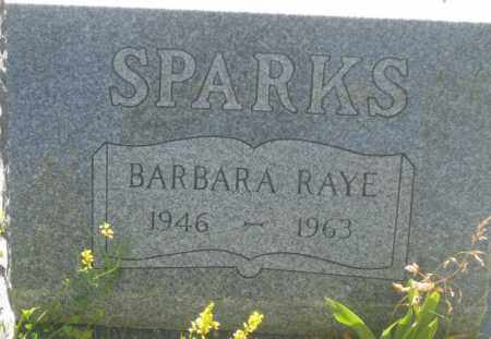 SPARKS, BARBARA  RAYE - Fall River County, South Dakota | BARBARA  RAYE SPARKS - South Dakota Gravestone Photos