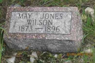 JONES WILSON, MARY - Fall River County, South Dakota | MARY JONES WILSON - South Dakota Gravestone Photos
