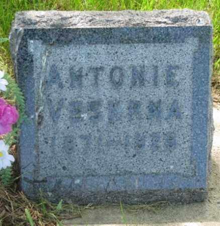 VESKRNA, ANTONIE - Gregory County, South Dakota   ANTONIE VESKRNA - South Dakota Gravestone Photos