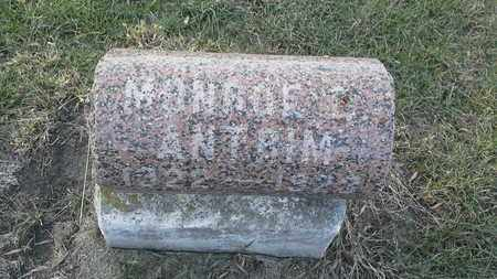 ANTRIM, MONROE L - Hamlin County, South Dakota   MONROE L ANTRIM - South Dakota Gravestone Photos