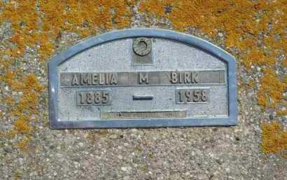 BIRK, AMELIA - Hamlin County, South Dakota | AMELIA BIRK - South Dakota Gravestone Photos