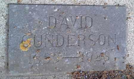 GUNDERSON, DAVID - Hamlin County, South Dakota | DAVID GUNDERSON - South Dakota Gravestone Photos