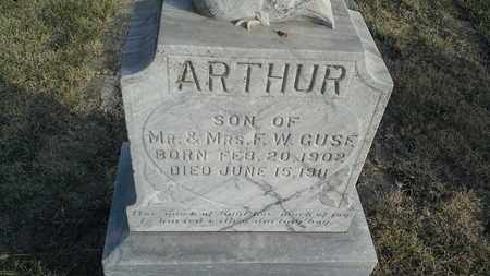 GUSE, ARTHUR - Hamlin County, South Dakota | ARTHUR GUSE - South Dakota Gravestone Photos