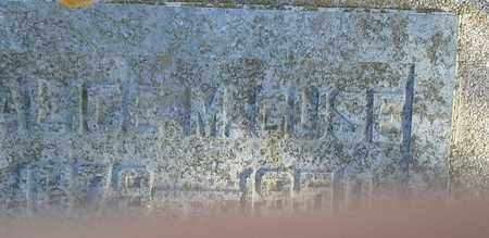 GUSE, ALICE M - Hamlin County, South Dakota | ALICE M GUSE - South Dakota Gravestone Photos