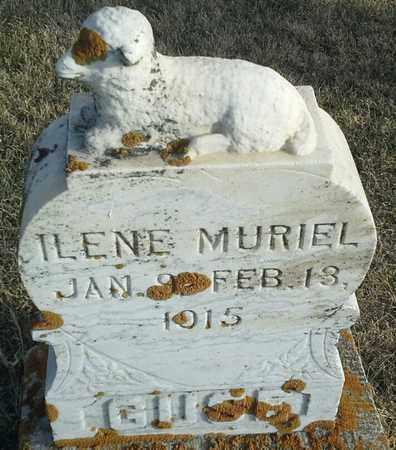GUSE, ILENE MURIEL - Hamlin County, South Dakota | ILENE MURIEL GUSE - South Dakota Gravestone Photos