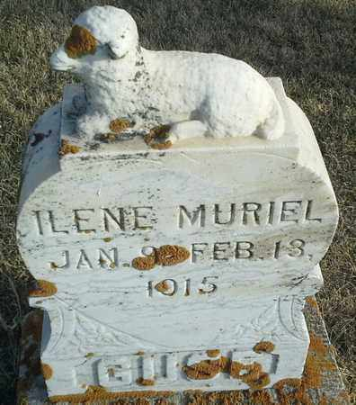 GUSE, ILENE MURIEL - Hamlin County, South Dakota | ILENE MURIEL GUSE - South Dakota Gravestone Photos